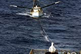 USS Carney (DDG 64) begins to tow disabled vessel Anna Lee to shore. Carney preformed this rescue