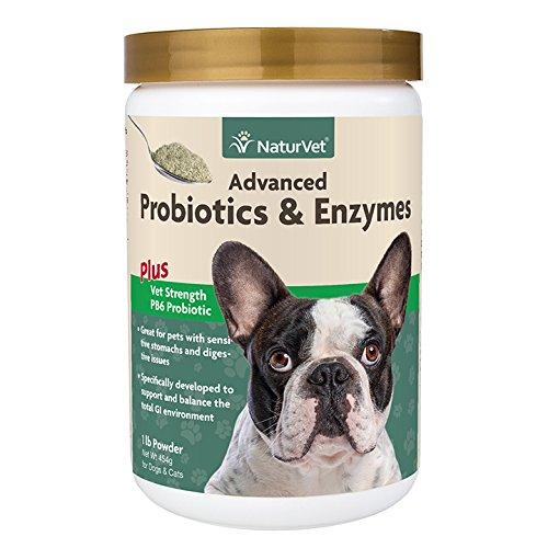 NaturVet Advanced Probiotic & Enzymes Powder 1lb for Dogs