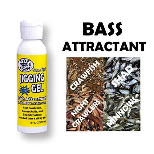 Best Fishing Attractants