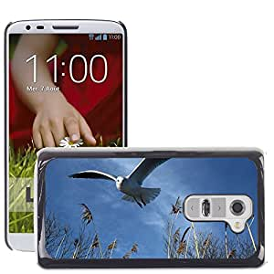 Super Stella Slim PC Hard Case Cover Skin Armor Shell Protection // M00148896 Seagull Fly Bird Wing Freedom // LG G2 D800 D802 D802TA D803 VS980 LS980