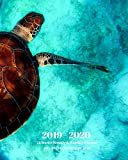 2019 - 2020 | 18 Month Weekly & Monthly Planner July 2019 to December 2020: Sea Turtle in Ocean Marine Life Vol 10 Monthly Calendar with U.S./UK/ ... Holidays- Calendar in Review/Notes 8 x 10 in.