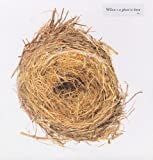 Wilco: A Ghost Is Born [Vinyl LP] (Vinyl)