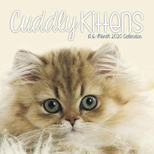 Cuddly Kittens 2020 Mini Calendar