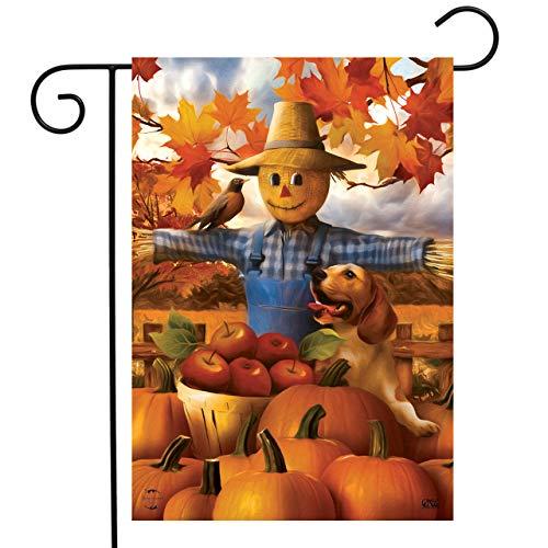 Briarwood Lane Autumn Scarecrow Harvest Garden Flag Puppy Pumpkins Apple Basket 12.5