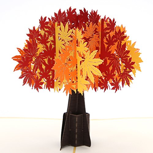 Liif Maple Tree Pop Up Greeting Card, 3D