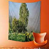 Analisahome Tapestries Wall Hanging Beautiful Serenity Trees Track Path Garden Leaves and Grass Sunny Skies Photography Green Bedroom Living Room Dorm Wall Hanging Tapestry