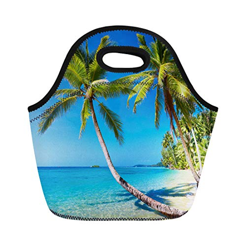 Semtomn Neoprene Lunch Tote Bag Blue Tropic Tropical Beach Kood Island Thailand Paradise Palmtree Reusable Cooler Bags Insulated Thermal Picnic Handbag for Travel,School,Outdoors,Work