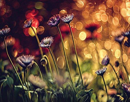 1.5' Glitter (JP London CNV1X217575 Dimitar Lazarov - Untitled Ruby Floral Glitter 2 inch Thick Heavyweight Gallery Wrap Canvas Wall Art 2' x 1.5')