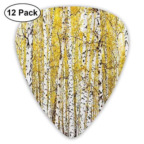 Brass Woodland Leaf - Guitar Picks - Abstract Art Colorful Designs,Autumn Birch Forest Golden Yellow Leaves Woodland October Seasonal Nature Picture,Unique Guitar Gift,For Bass Electric & Acoustic Guitars-12 Pack