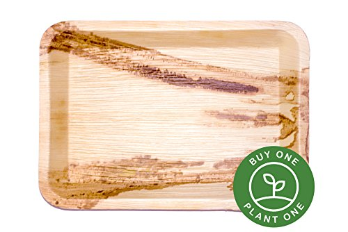 5 Heavy Duty Disposable and Home Compostable Party Trays Platters made from Palm Leaf 14 inch Rectangle