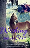 img - for Wishing on a Star: Taken for a Hot Summer Ride by a Horse Shapeshifter (Slave to the Farm Book 2) book / textbook / text book