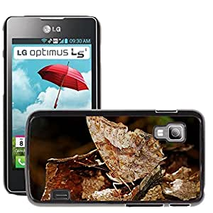 Super Stella Slim PC Hard Case Cover Skin Armor Shell Protection // M00147449 Butterfly Camouflage Insect Nature // LG Optimus L5 II Dual E455 / E460