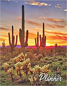 2020 Planner: Pretty Desert Sunset Daily & Weekly Planner ...