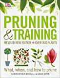 img - for Pruning and Training, Revised New Edition: What, When, and How to Prune book / textbook / text book