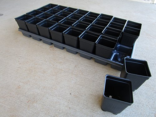 Cheap Landmark Plastics Set of 3 TRAYS AND 96-2.5″ SQUARE EXTRA deep pots by