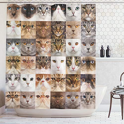 Ambesonne Cat Lover Decor Collection, 36 Cat Heads Breed British Shorthair Turkish Angora Looking At Camera, Polyester Fabric Bathroom Shower Curtain, 75 Inches Long, Brown White Beige