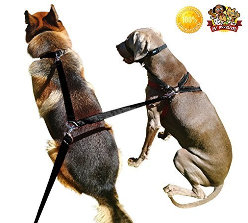 Quirk & Ferg Pet Supplies for Dog Leashes - Dogs Double Clip Leash - 8ft Dual Dog Training Leash 2 x Dogs 1 x Leash]()