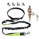 Hands Free Dog Leash, Nylon Running Dog Leash with Adjustable Waist Belt and Control Handle Bungee Reflective Pet Leash for Walking Jogging Hiking