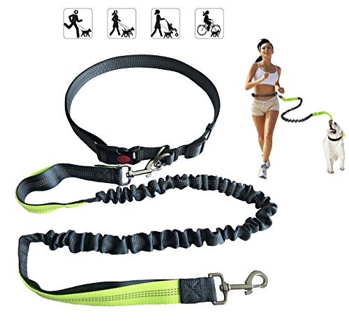 YSNJLQ Hands Free Dog Leash, Nylon Running Dog Leash With Adjustable Waist Belt and Control Handle Bungee Reflective Pet Leash for Walking Jogging Hiking