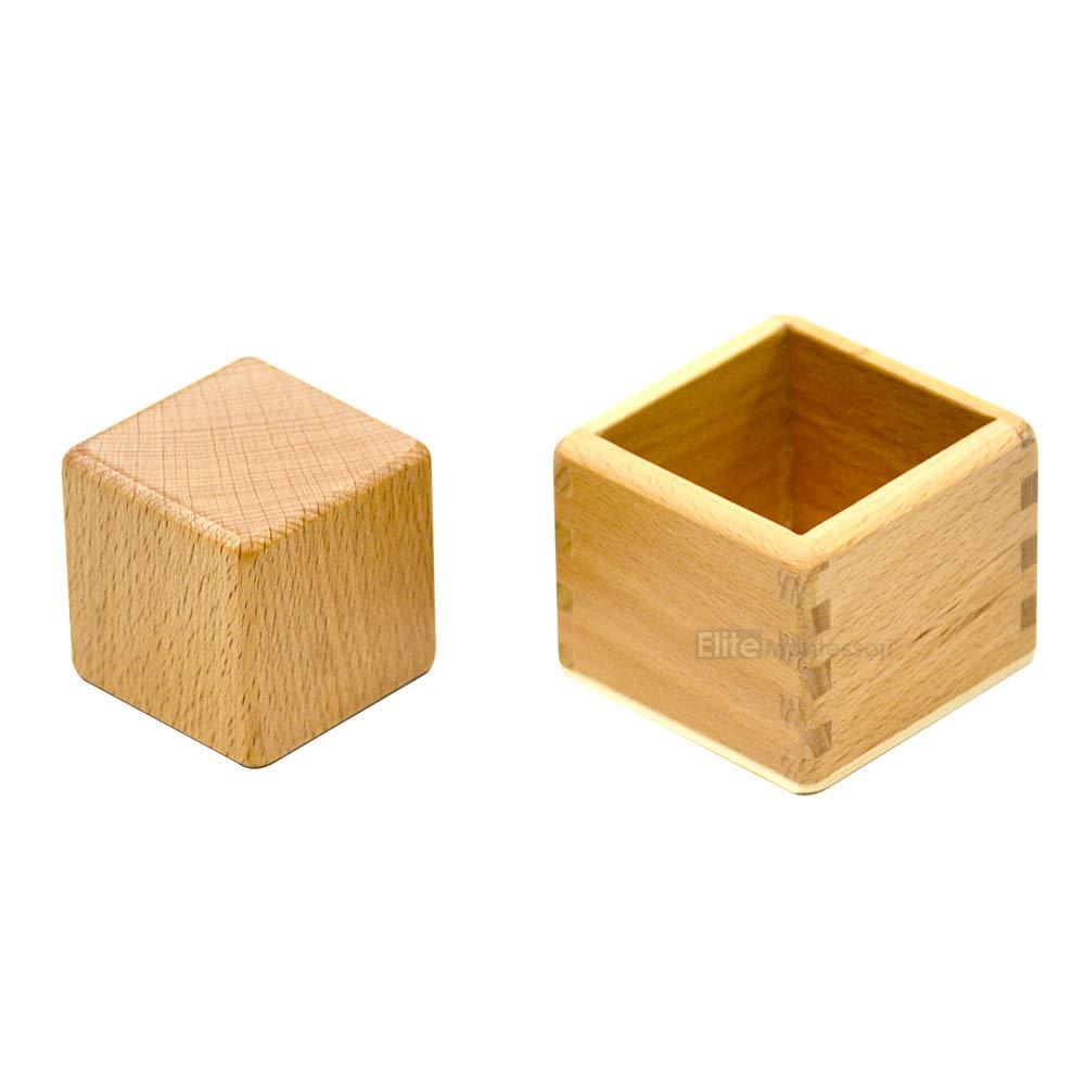 Elite Montessori 3D Object Fitting Exercise