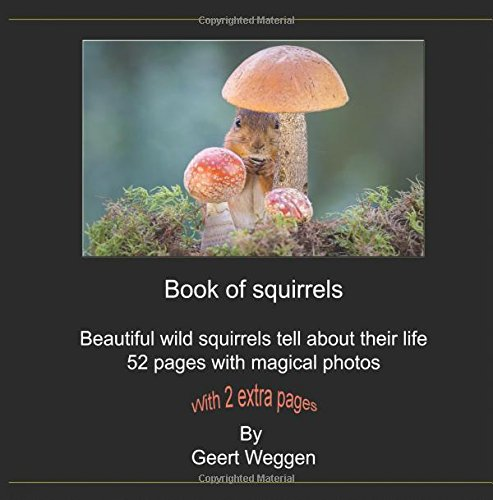 Book of squirrels: Beautiful magical photos of wild squirrels pdf