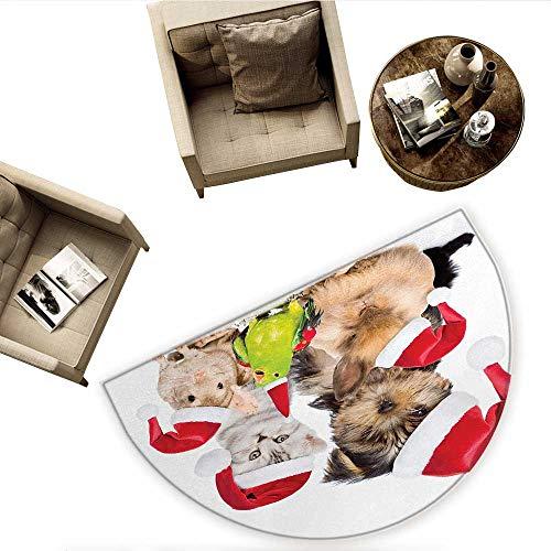 (Christmas Semicircle Doormat Xmas Crew Cat Dog Bird Mouse and Rabbit Bunny with Santa Hats Grumpy Pets Picture Halfmoon doormats H 55.1