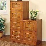Coaster Home Furnishings 5318N Traditional File Cabinet, Oak