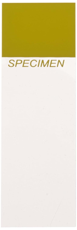 Mirri 220Gsm Super-Reflective Cardstock A4 10//Pkg-Starlight Silver