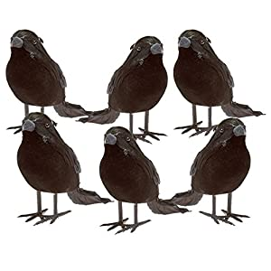 Prextex Halloween Black Feathered Small Crows – 6 Pc Black Birds Ravens Props Décor Halloween Decorations Birds