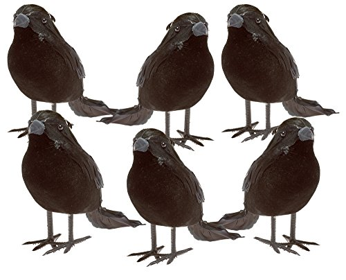 Prextex Halloween Black Feathered Small Crows - 6 Pc Black Birds Ravens Props Décor Halloween Decorations Birds