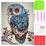 #8: Outuxed 1Pack 16 X 20 inch 5D Full Diamond Painting Kits for Adults with 1Pack Diamond Painting Tools Kits for Home Wall Decor(Owl)