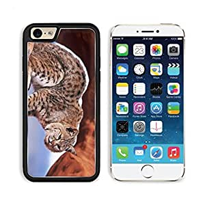 Lion Leopard Cub Jungle Wildlife Animal Apple iPhone 6 TPU Snap Cover Premium Aluminium Design Back Plate Case Customized Made to Order Support Ready Liil iPhone_6 Professional Case Touch Accessories Graphic Covers Designed Model Sleeve HD Template Wallpaper Photo Jacket Wifi Luxury Protector Wireless Cellphone Cell Phone