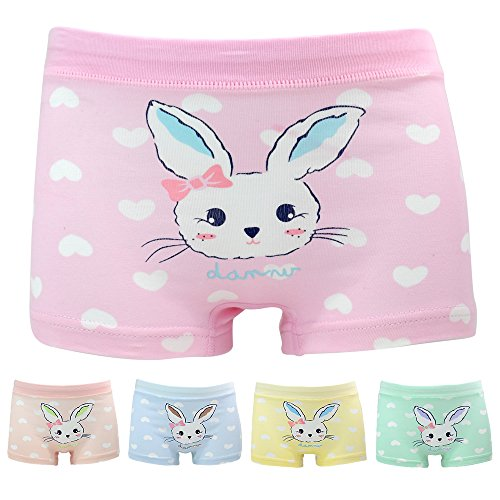 (Little Girls Rabbit Panties Bunny Boyshort Pink Undies 5 Pack Boxer Briefs for Kids,3-4 years,Bunny)