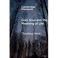 God, Soul and the Meaning of Life (Elements in the Philosophy of Religion) (English Edition)