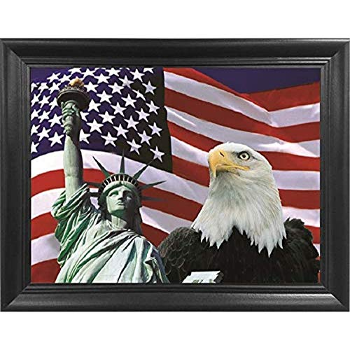 Statue of Liberty American Flag Eagle 3D Poster Wall Art Decor Framed Print | 18.5x14.5 | Lenticular Posters & Pictures | Memorabilia Gifts for Guys & Girls Bedroom | Patriotic New York USA Pride