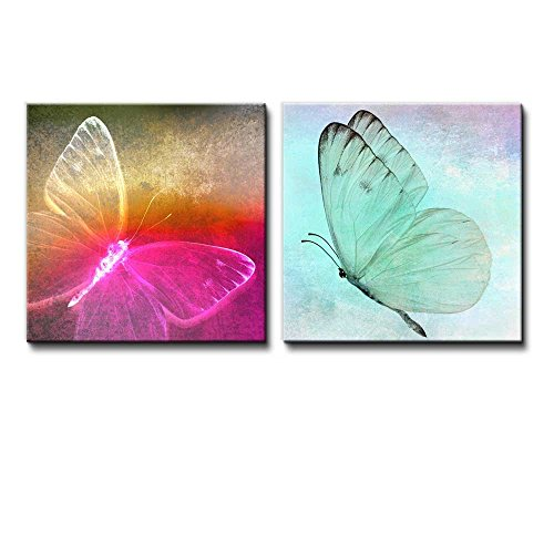 2 Piece Image of an Electrically Colored Butterfly and a Calming Butterfly Caught in Mid Flight