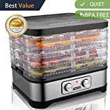Best beef jerky dryer - Food Dehydrator Machine, Jerky Dehydrators with Five Tray Review