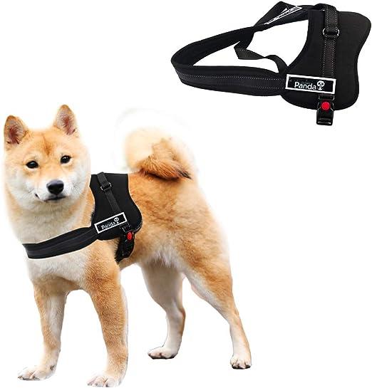 PYRUS perro arnés no-pull perro correa acolchada mascota caminar ...