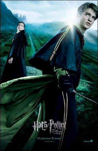 Harry Potter y el cáliz de fuego cartel de película: Amazon ...