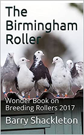 GLENNA: Birmingham adult book stores