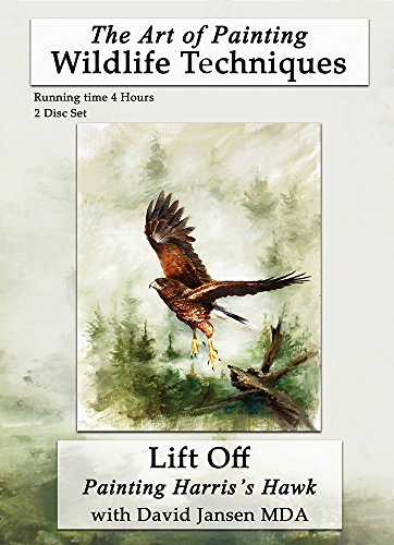 Jansen Art Studio Lift Off: Painting Harris's Hawk