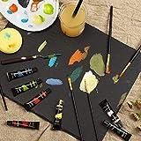 Salvador Acrylic 40 Piece Paint Set - 24 Colors