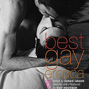 Best Gay Erotica 2010 Audiobook