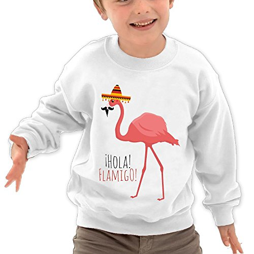 Puppylol Hola Flamingo Kids Classic Crew-neck Pullover Sweatshirt White 4 Toddler (And Lloyd Rodgers Christmas Aaron)