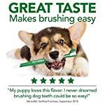Vet's Best Enzymatic Dog Toothpaste | Teeth Cleaning and Fresh Breath Dental Care Gel | Vet Formulated 13