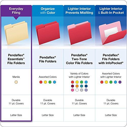 Amazon.com : Pendaflex Essentials File Folders, Letter Size, 1/5 ...