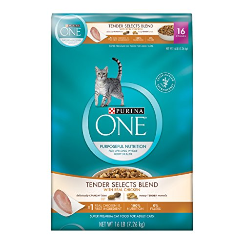 Purina ONE Tender Selects Blend With Real Chicken Dry Cat (Purina One Chicken And Rice)