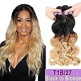 Ombre Brazilian Hair Body Wave Bundles 4pcs,Ombre Brazilian Virgin Hair Human Hair Weave Two Tone Black to Blonde (T1B/27,18'' 20'' 22'' 24'')