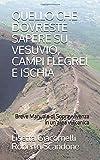 QUELLO CHE DOVRESTE SAPERE SU VESUVIO, CAMPI FLEGREI E ISCHIA: Breve Manuale di Sopravvivenza in un'area Vulcanica