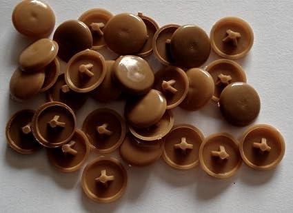 Celtic Woods - Protectores de presión para cabezas de tornillos tipo pozidriv, plástico, 50